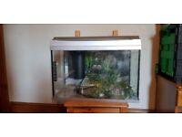 Fish tank , aquarium 60 liters