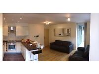 1 Double Bedroom with ensuite in furnished 2 bed Fallowfield flat. Young professionals please