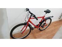 Raleigh mountain mens bike