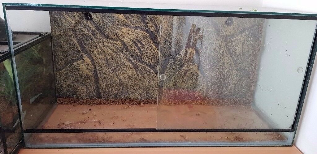 Vivarium and equipment Bundle £450. Will sell bits separately. Individual prices in the details.