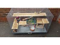 Degu chinchilla cage