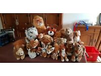 Collection of lions and tigers in good condition