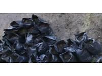 Bagged Up Garden Soil Free