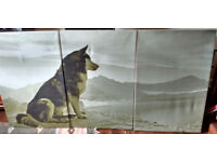 Wall Canvas Wolf Canvas