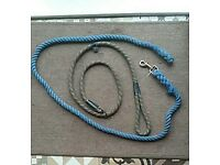 Two dog leads