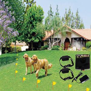 ELECTRIC PET FENCING IN DENVER COLORADO | COLORADO PET FENCE