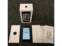 Apple iPhone 5s (Factory unlocked)