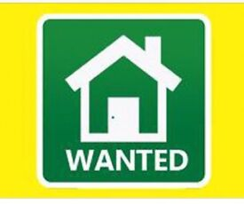3 Bedroom House Wanted