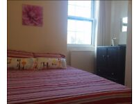 GREAT DOUBLE ROOM IN OVAL!FINNALY ON THE MARKET!!