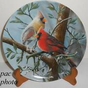 Bird Collector Plates