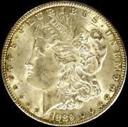 1889 One Dollar Coin