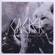 Casper XOXO