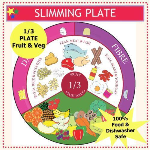 Healthy eating plate other diet weight loss ebay for Slimming world offers