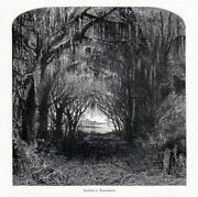 Antique Cemetery