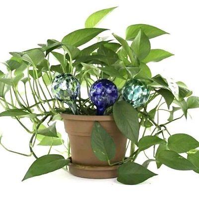 Mini Aqua Globe Plant Watering Glass Bulb Waters Your Plants Green Blue (Aqua Globe Plant)