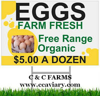 C & C Farms - EGGS - Free Range Farm Fresh