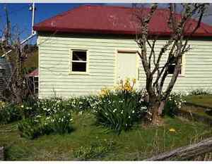 Cute cottages Collinsvale Glenorchy Area Preview