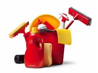 L&S Domestics -To busy to clean?? Look no further
