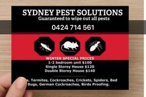 SEVEN DAY PEST SOLUTIONS- MICE RATS COCKROACHES GUARANTEED ALL SYDNEY Hornsby Hornsby Area Preview