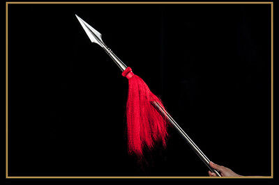 Handmade Chinese Wushu Spear Stainless Steel Kung Fu Sword 红缨枪 Detachable Rod