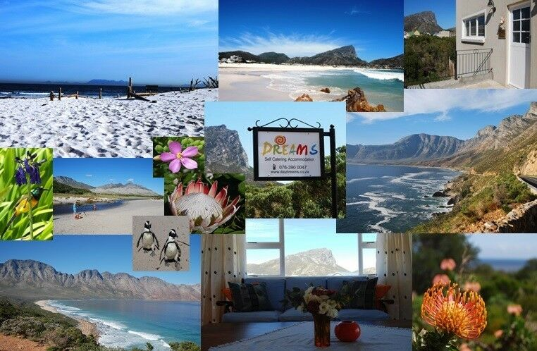 Holiday Special! Perfect Holiday Home 100m to Beach in Pringle Bay, 1h to Cape Town, NO WATER RESTRI