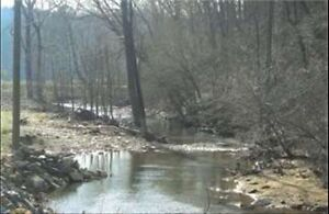 Investment in Ellijay, GA Development/Timber -60 Acres Call Now!