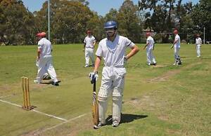 Male cricketers wanted!! season starting October 2016 Adelaide CBD Adelaide City Preview