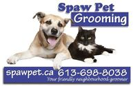 DOG AND CAT GROOMER - CERTIFIED - HOME BASED