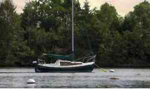 Halman 20 sailboat and trailer for sale