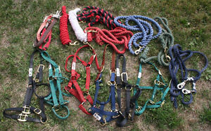 LOT of HORSE & PONY Halters - Lead Ropes & Trailer Ties - NICE!!