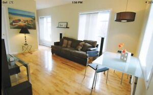 Lovely Furnished 3 1/2 in Griffintown, All furniture included