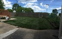 Sod-Victor Landscaping