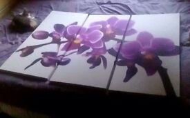 Purple Lilly canvas for sale