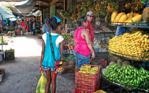 Discover how affordable living in Belize can be