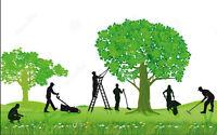 Commercial Property Maintenance Labourer