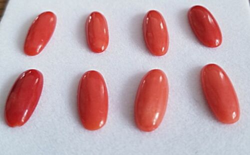 Natural Coral Loose Gemstone Oval Cabochon Stone 8 pc Lot 7 X 16 mm