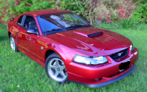 2004 GT Mustang 40th Anniversary - Mint, Super Low KM