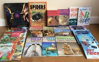 Children's / Kid's Books + Harry Potter Novels