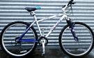 adults giant bike