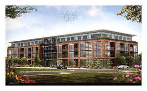 New Two Bedrooms Suite in Kitchener Waterloo near Google & DT Kitchener / Waterloo Kitchener Area image 1