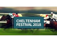 Cheltenham Gold Cup tickets (4 available)