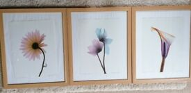 3 light wood picture frames with silver Beading detail