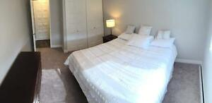 One Bedroom Suite WestLawn Village for Rent - 9535 165 Street NW Edmonton Edmonton Area image 10