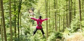 Go ape, tree top adventure - HALF PRICE