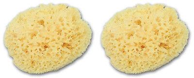 SET of 2 Large 6'' to 6.5'' Greek Fino Silk Natural Sea Sponges