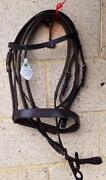 Brown COB Bridle