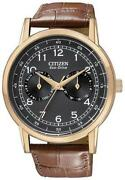 Citizen Eco-drive Gold