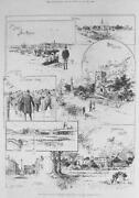 Brighton Print