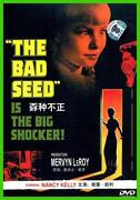 The Bad Seed DVD