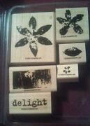 Stampin Up Paint Prints